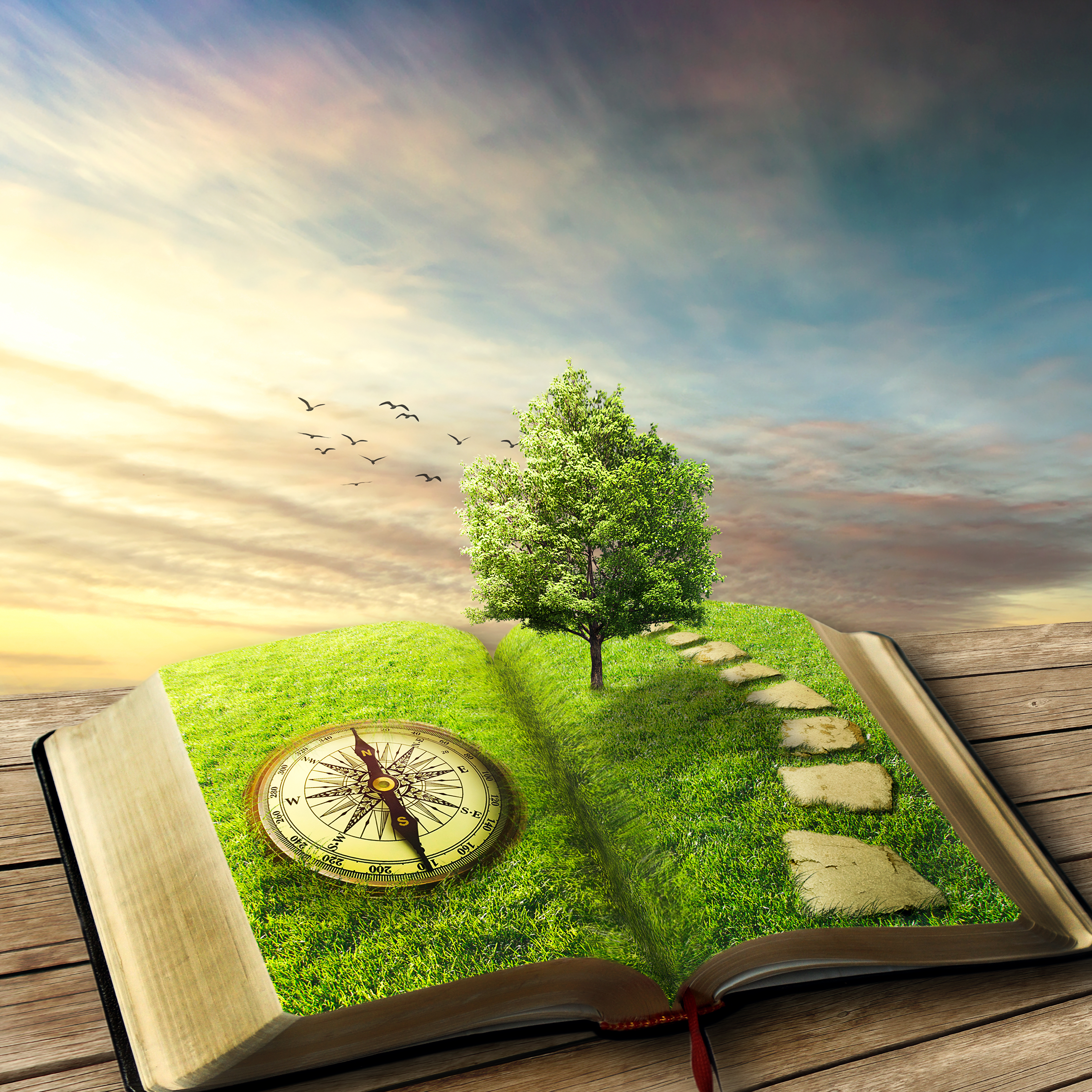 Illustration of magic opened book covered with grass, compass, tree an